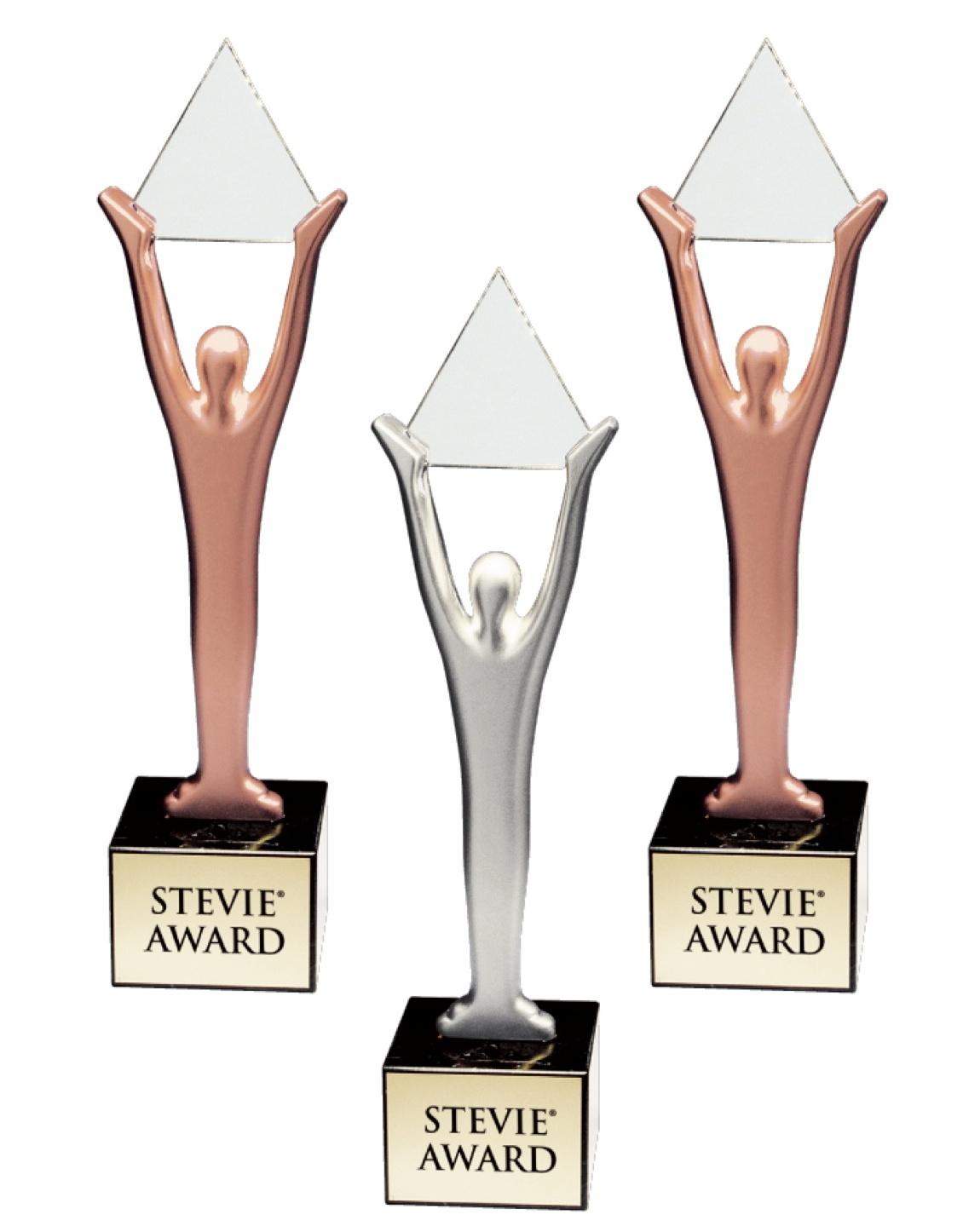 The Stevie Awards.jpeg